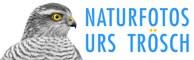 Naturfoto-Blog und mehr